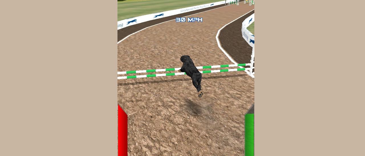 Dog Racing Simulator