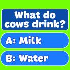 Trivia! Best family quiz
