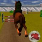 Jumping Horse 3D