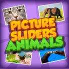 Picture Slider Animals